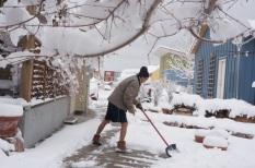 alan shoveling